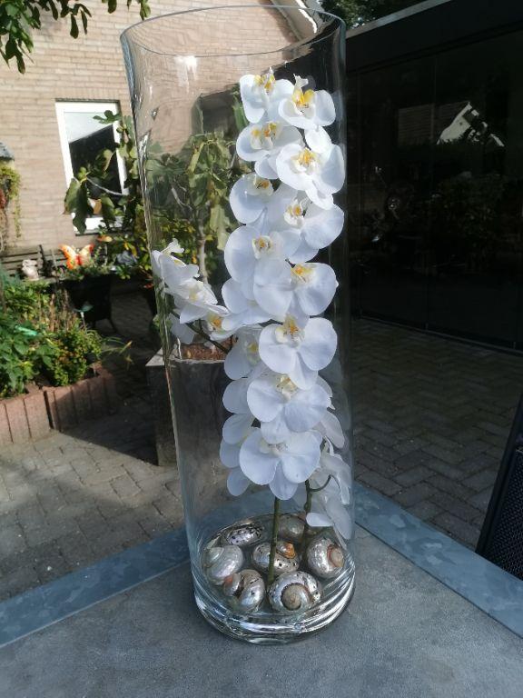 Grote vazen met orchidee erin nieuw!!!!!