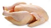 Dierenbenodigdheden Kippen plukmachine, pluimmachine